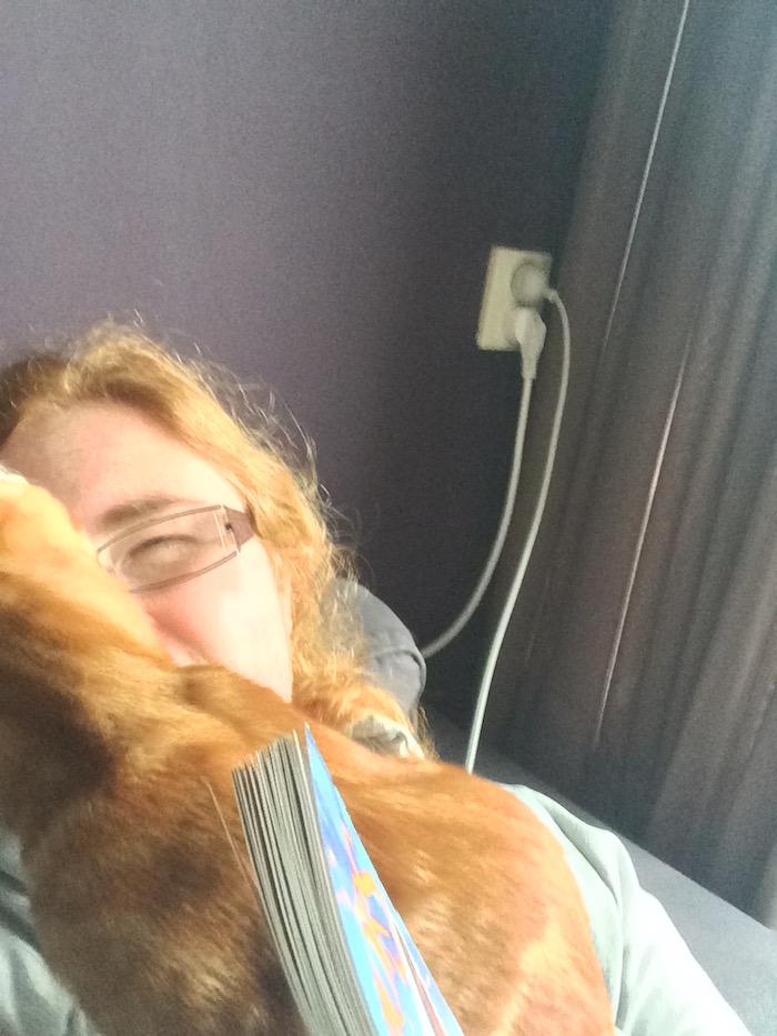 katten en lezen