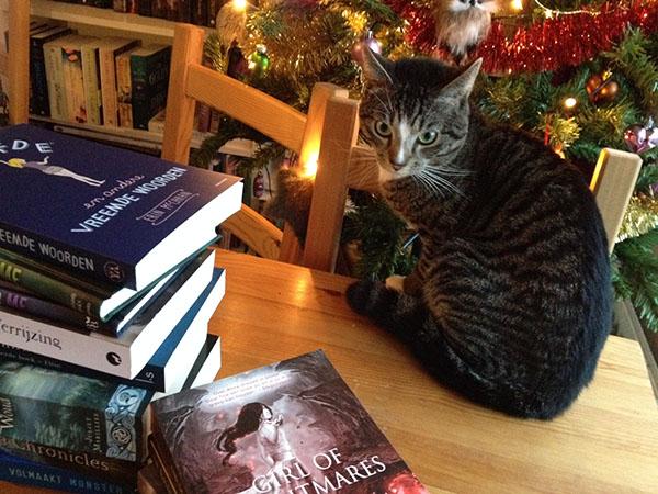 Deze boeken ga ik zo erg lezen tijdens mijn kerstvakantie